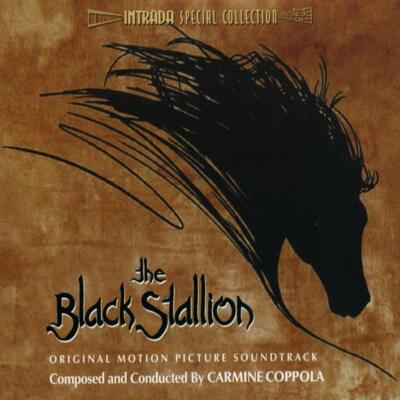 Cover art for The Black Stallion