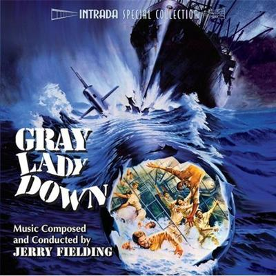 Cover art for Gray Lady Down
